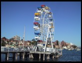 Digital photo titled manly-ferris-wheel