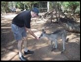 Digital photo titled philip-feeding-roo