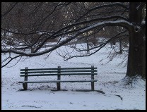 Digital photo titled snowy-bench
