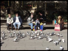 Digital photo titled feeding-pigeons-outside-cathedral