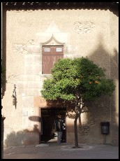 Digital photo titled poble-espanyol-orange-tree