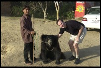 Digital photo titled philip-petting-roadside-bear