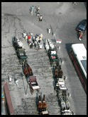Digital photo titled stephansplatz-horses