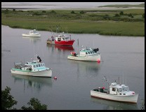 Digital photo titled chatham-fishing-boats