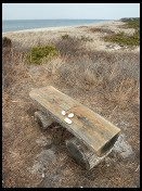Digital photo titled fulton-memorial-bench-mink-meadows