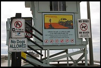 Digital photo titled venice-beach-no-dogs-signs