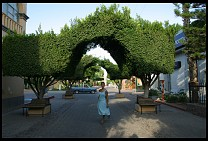 Digital photo titled loreto-topiary-1