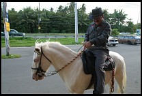 Digital photo titled man-on-pony-loquillo
