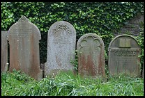 Digital photo titled headstones