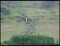 Digital photo titled lake-buttermere-trees