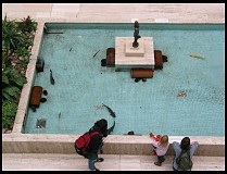 Digital photo titled royal-museum-atrium-fish-pond-1