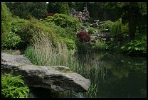 Digital photo titled rock-garden-2