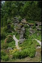 Digital photo titled rock-garden-6