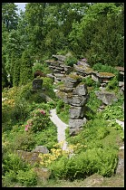 Digital photo titled rock-garden-7