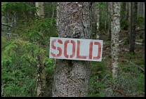 Digital photo titled kineo-sold-sign-half-over