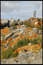 Digital photo titled rocky-island-2