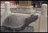 Turtle. Forbidden City. Beijing