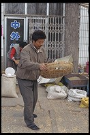 Tossing corn.  Yuting Flower and Bird Market. Beijing.