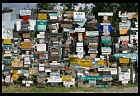 Digital photo titled watson-lake-sign-forest-6