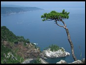 Digital photo titled rikuchu-kaigan-national-park-coast-2