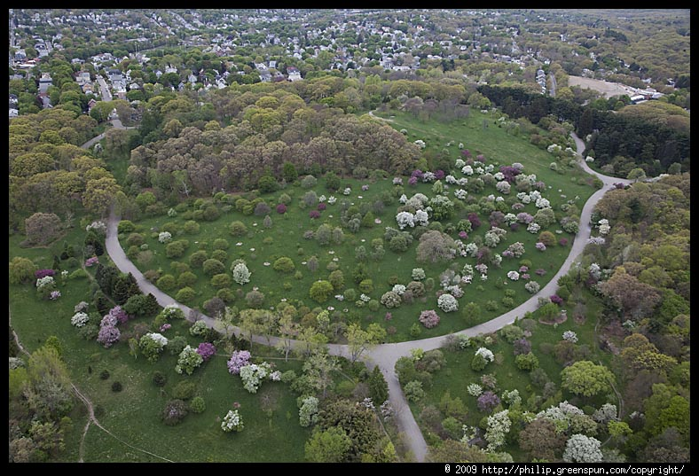 Photograph by Philip Greenspun: arnold-arboretum-6: philip.greenspun.com/images/20090504-aerials/arnold-arboretum-6.tcl