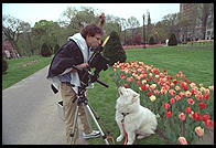 Philip trying to photograph George.  Boston Garden.  The camera is a Sinar F2 view camera.