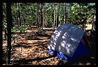 My tent in the Jemez mountains while I worked at Los Alamos (New Mexico).