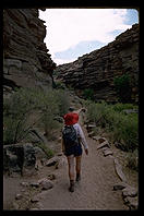 Bright Angel Trail.  Grand Canyon.  Arizona.