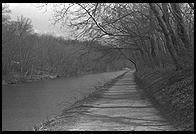 C&O Canal.  Along the Potomac River near Washington, D.C.  1981.