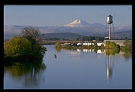 Mt. Shasta from Klamath Falls, Oregon