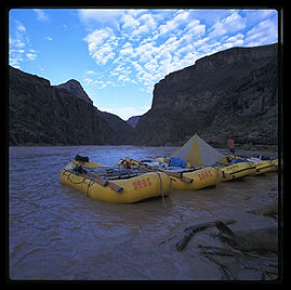 OARS boats in Grand Canyon