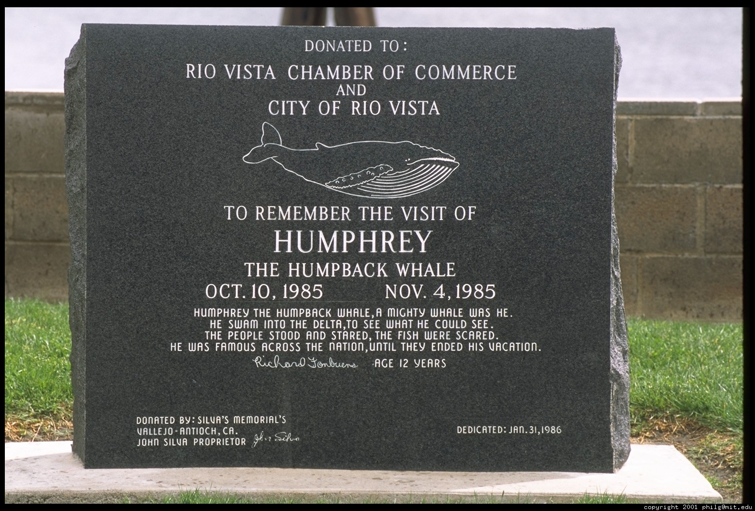 Humphrey the Whale Plaque