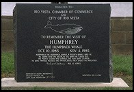 Humphrey the Whale sign.  Rio Vista, California