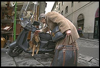 Even dogs have mopeds in Italy