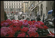 Flowers and mopeds in Florence