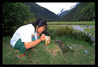 Saeko and a Kea bird.  Along the Routeburn Track.  South Island, New Zealand.