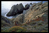 Cove at Point Lobos.  California Coast, just south of Carmel.