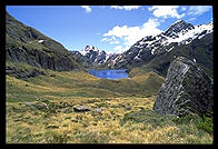 Somewhere along the Routeburn Track, near Queenstown, South Island, New Zealand
