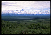 A typical visitor's experience of Mt. McKinley.