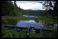 The view from my handlebars mountain biking through the Five Lakes district of Jasper National Park