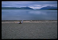 The beach on Naknek Lake.  Katmai National Park, Alaska.