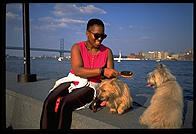 A woman grooms her dogs by the riverfront in Downtown Philadelphia.