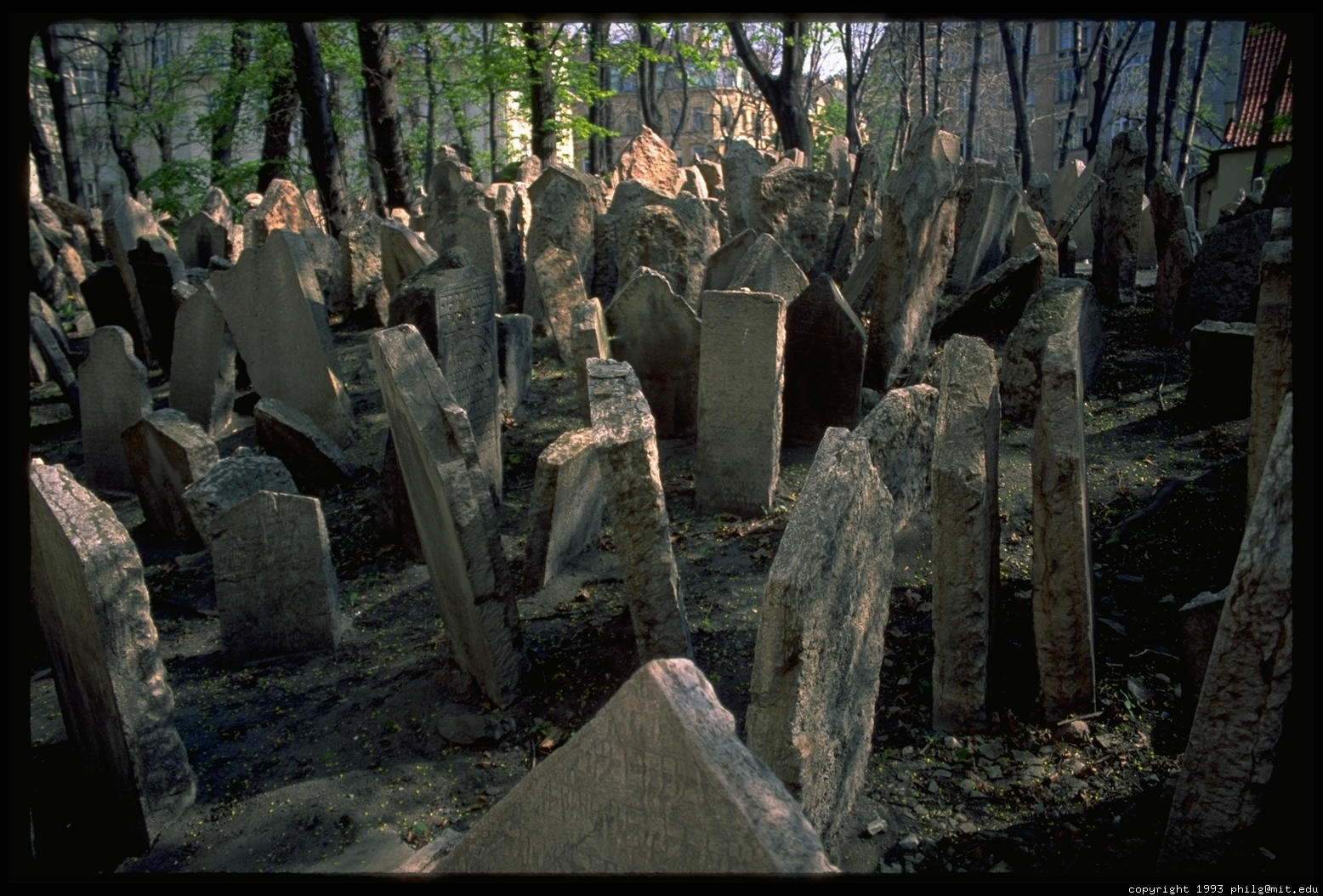 how to say cemetery in japanese