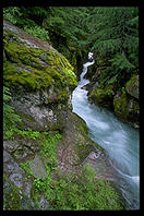 Avalanche Creek Falls, top of the Cedars Trail, Glacier National Park (Montana)