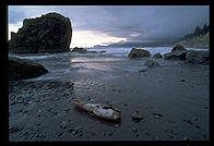 Ruby Beach, Olympic National Park (Washington)