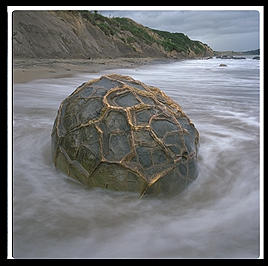 A solo Moeraki Boulder on the east coast of the South Island of New Zealand