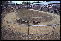 Overview of pig racing at the New Jersey State Fair 1995.  Flemington, New Jersey.