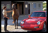 Porsche and horse.  Amish country, Pennsylvania.