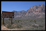 Red Rock Canyon National Conservation Area.  Near Las Vegas, Nevada