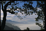 Early Morning.  Big Sur, California.